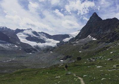 randonnée glacier guide haute montagne